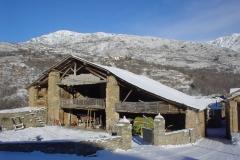 Altron nevado (2013)